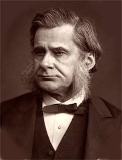 Woodburytype print of Huxley (1880 or earlier).